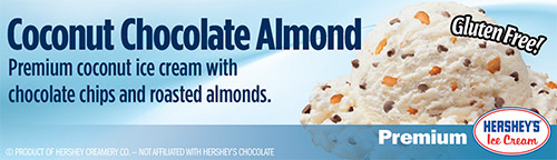 Coconut Chocolate Almond: Premium coconut ice cream with chocolate chips and roasted almonds!